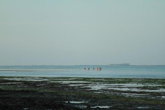 Melia Zanzibar : Praia