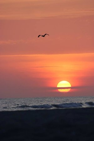 Castaways Cottages of Sanibel: sunset 5/9/2014