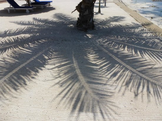 Hol Chan Reef Villas: Palm shade art