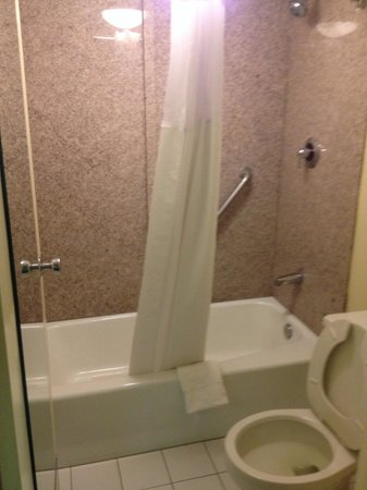Quality Inn Elizabeth City: Bathroom