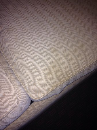 Country Inn & Suites By Carlson, Port Canaveral: Couch in our 1st room.