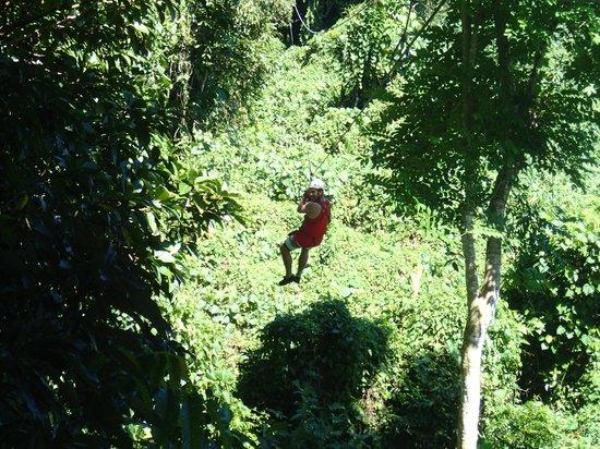 Vanuatu Jungle Zipline: ziplining