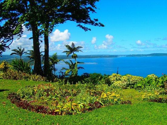 Vanuatu Jungle Zipline: gorgeous view