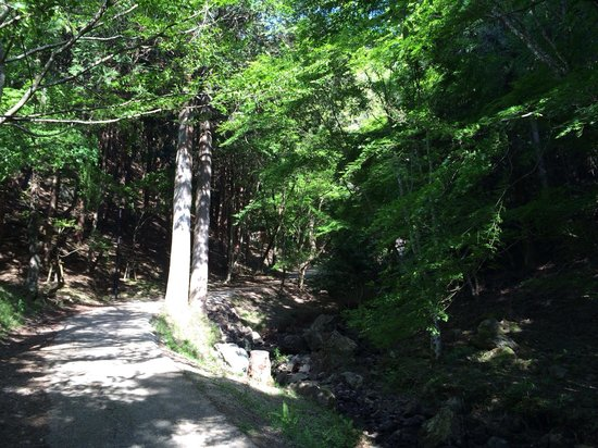 Koto Fall: 道を登っていきます