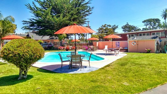 Butterfly Grove Inn : Family swimming pool area