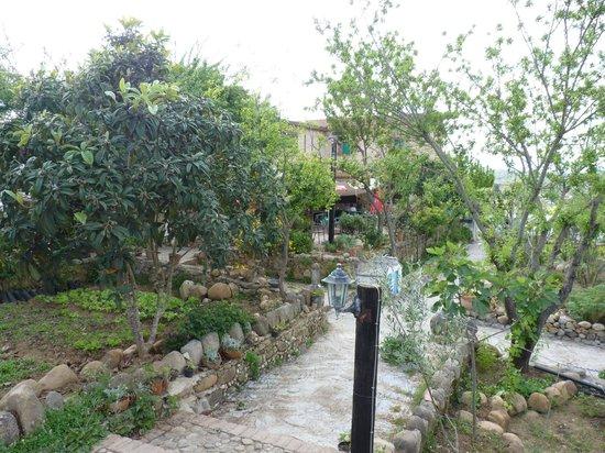 Jard n picture of auberge dardara chefchaouen tripadvisor for Auberge jardin champetre magog