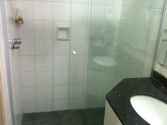 Dan Inn Curitiba Hotel: Box banheiro (o piso é escuro mas esteve bem limpo em todos os dias da estadia)
