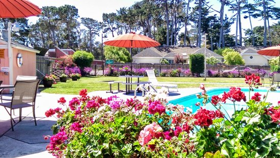 Butterfly Grove Inn: Pool facilities and grounds