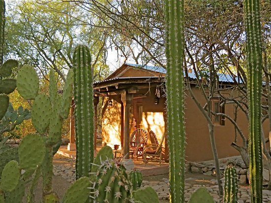 El Pedregal Nature Lodge and Retreat Center: The nature around the rooms