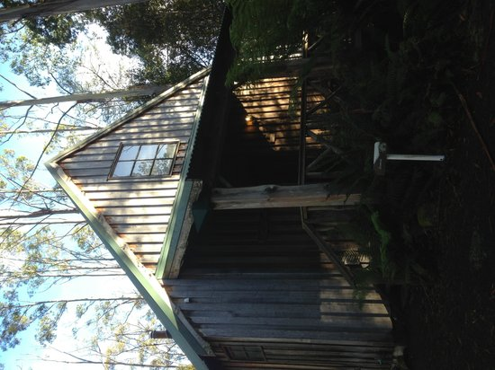 Lemonthyme Wilderness Retreat: Sunrise Room