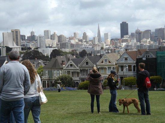 San Francisco Movie Tours : Great views