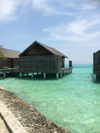 Gangehi Island Resort: overwater budgalow