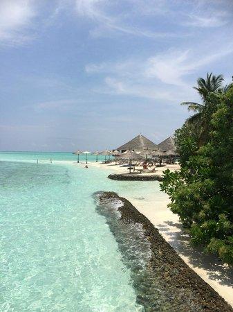 Gangehi Island Resort: beach