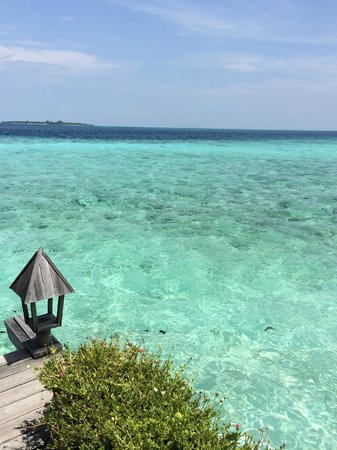 Gangehi Island Resort: indian ocean view