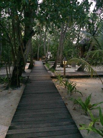 Gangehi Island Resort: walking path