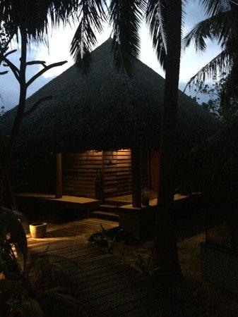 Gangehi Island Resort: club single room