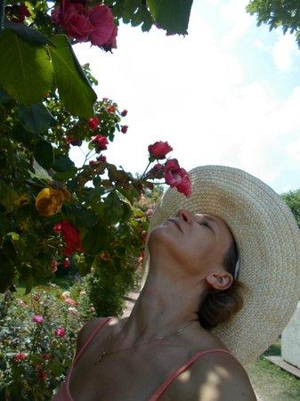 Jardin des Plantes : Розарий