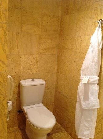 Regent Warsaw Hotel: Toillet in bathroom
