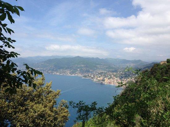 Camogli - San Rocco - Batterie - San Fruttuoso Trail : Camogli from the trail between Rocco and Batterie