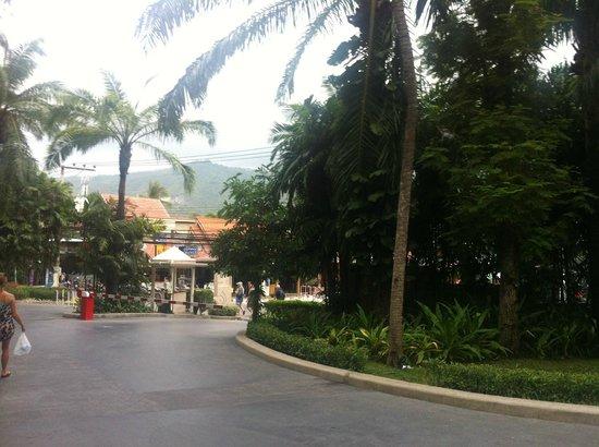 Centara Grand Beach Resort Samui: вид из отеля на дорогу