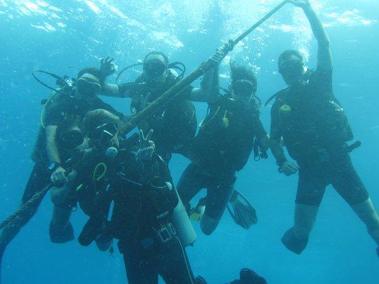 Ihasia Diving Koh Tao : Equipoooooo!!