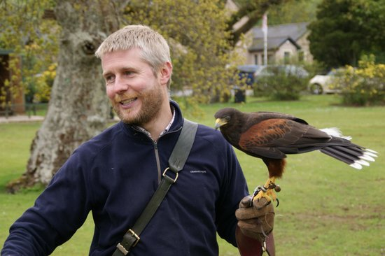 Strathblane Falconry: Greame