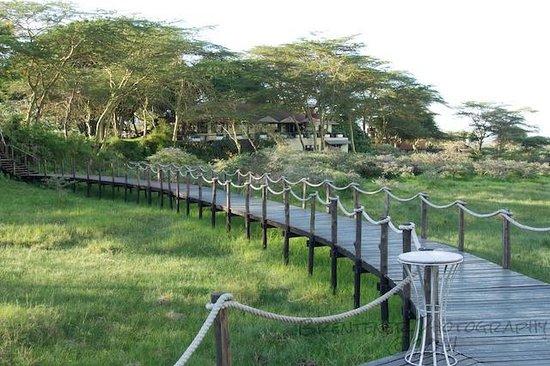 Hatari Lodge: Lodge
