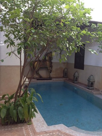 Riad Assakina : Pool shot
