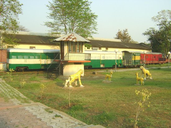 Narrow Gauge Rail Museum: Yard area