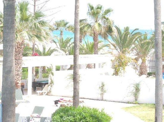 Hotel Movie Gate: terrasse du dejeuner