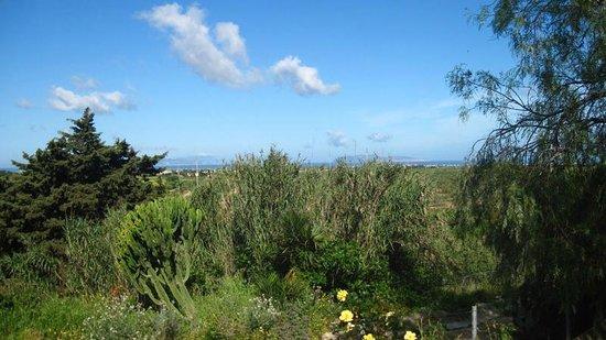 Agriturismo Vultaggio : Vue sur les îles