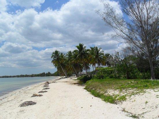 Villa Rio-Mar: menschenleerer Sandstrand