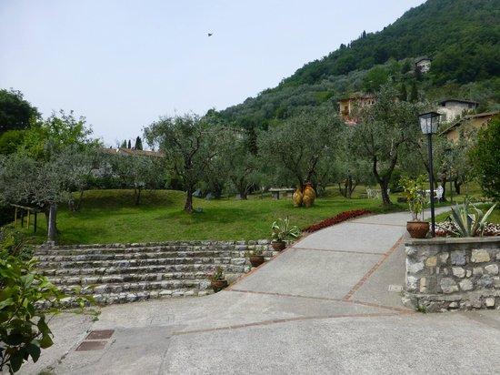 Residence Castello Oldofredi : Giardino di Olivi e piscina