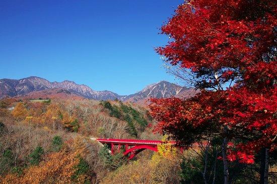 Kawamata Higashi Canyon Shizen Kansatsuen: 紅葉の時期が最高