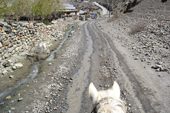 Breakfree Adventures - Private Day Tours: On the road to Muktinath