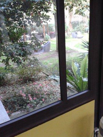 Hotel Fenix : Garten