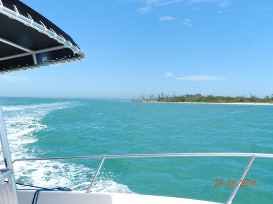 Sanibel Island Cruise Line : la plage