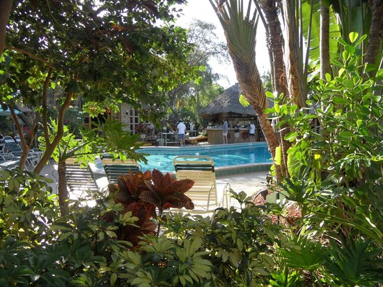 Best Western Naples Inn & Suites : View from near our room