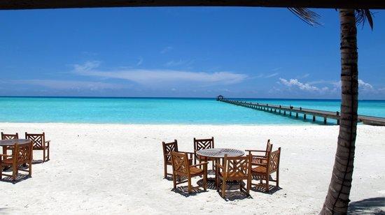 Holiday Island Resort & Spa : Beach view