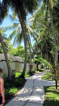 Holiday Island Resort & Spa : Island Interior