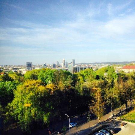 Crowne Plaza Vilnius: vue