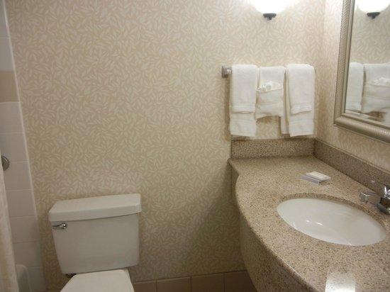 Hilton Garden Inn Ft. Lauderdale Airport-Cruise Port : Badezimmer