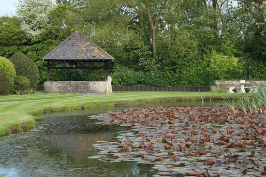 Rookery Manor: Pond and wishing well