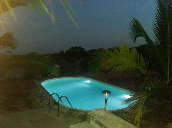 Finca Buena Vista: Swimming pool