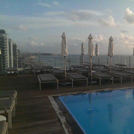 Carlton Tel Aviv : Rooftop Swimming Pool