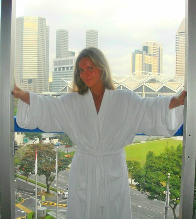Swissotel The Stamford Singapore: Вид из окна номера