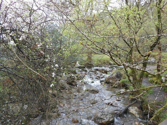The Wicklow Way: El rio