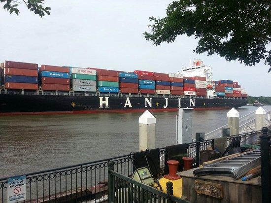Free Savannah Tours: Cargo carrier