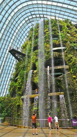 gardens by the bay the falls at the cloud forest entrance