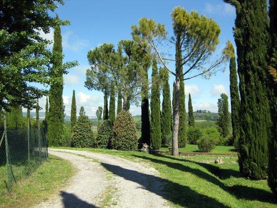 Agriturismo La Sovana : grounds